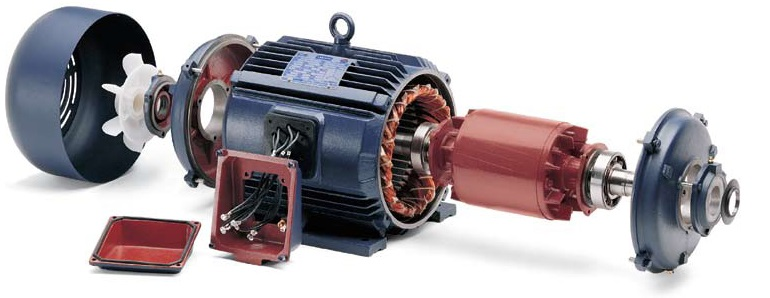 Large Induction Motor Protection 28 Images Induction